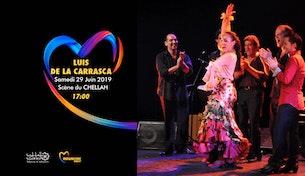 Festival Mawazine - Luis de la Carrasca