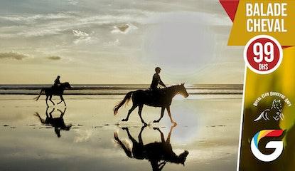 Balade cheval en bord de mer : Vous rêvez de galoper sur la plage !