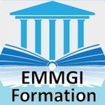 EMMGI Formation